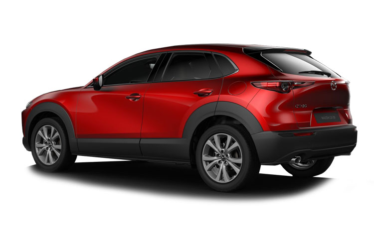 Mazda CX-30 SUV 2.0 e-SKYACTIV X MHEV 186PS Sport Lux 5Dr Auto [Start Stop] back view